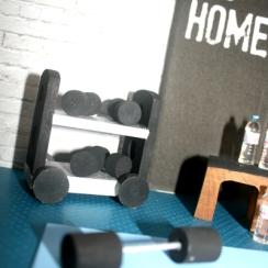Dollhouse9